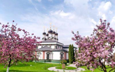 Монастырский сад в цвету